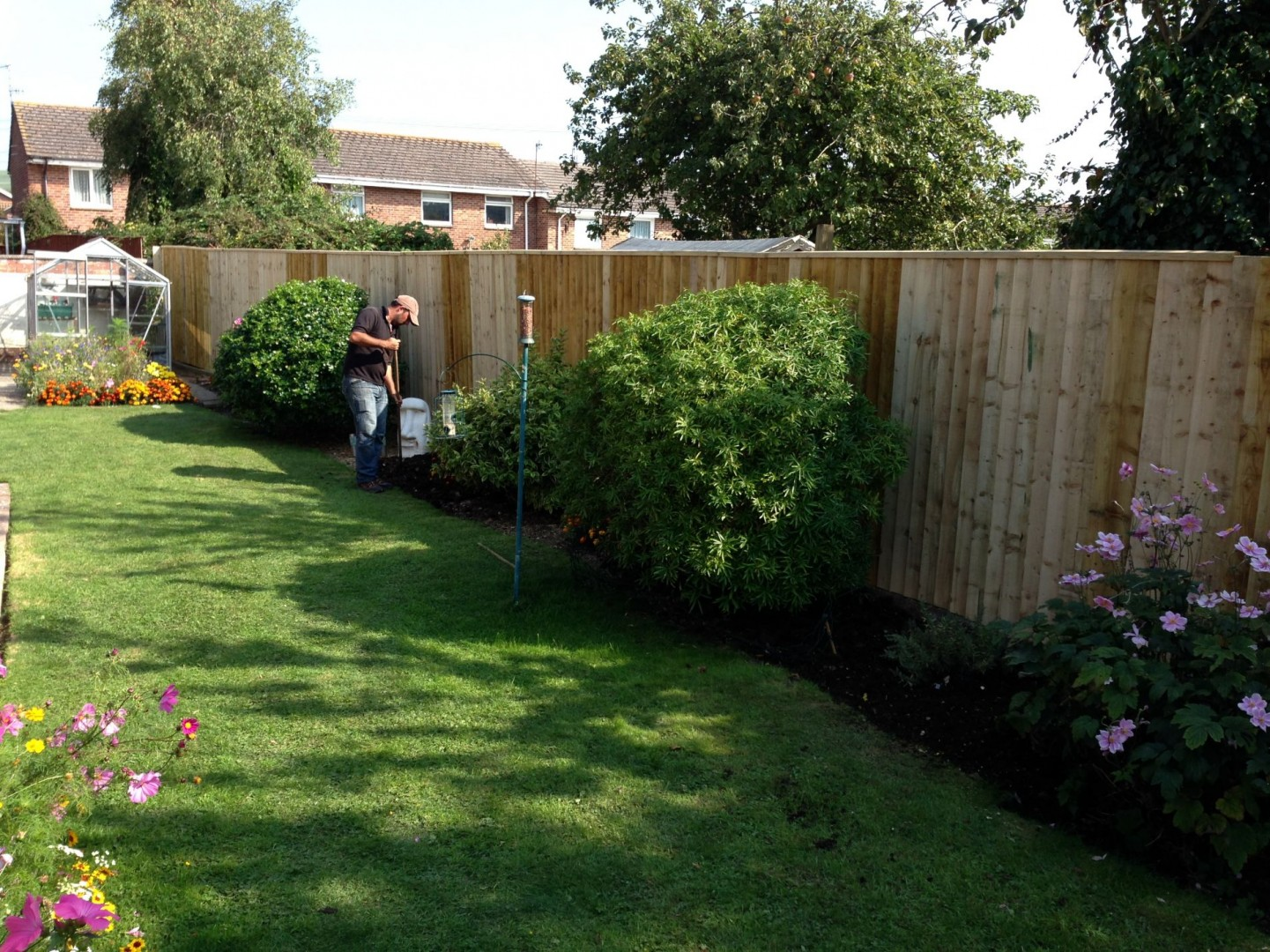 feather-board fencing