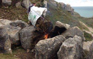 Sean burning dead Cotoneaster integrifolius plants