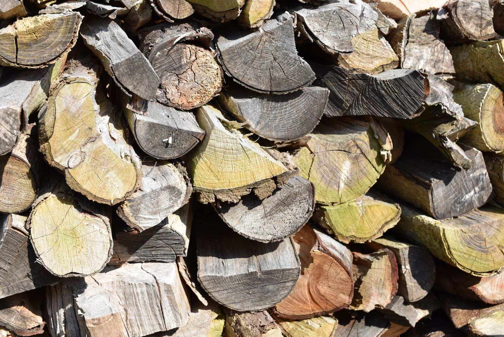 order your logs now, logs, seasoned mixed logs, seasoned hardwood logs, firewood, seasoned logs, seasoned hardwood, weymouth, portland, dorchester,