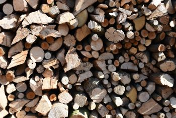 Unseasoned hardwood logs