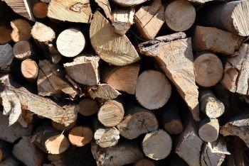 unseasoned mixed logs, unseasoned firewood, weymouth, portland, dorchester, unseasoned