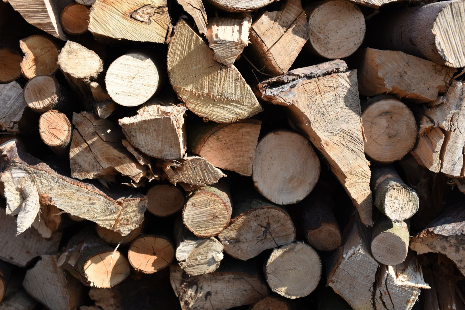 unseasoned mixed logs, unseasoned firewood, weymouth, portland, dorchester, unseasoned