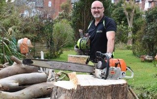 tree felling, tree felling Weymouth, tree felling Dorchester, tree felling PortlandTree surgeon Weymouth