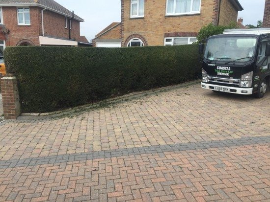 hedge trimming in Weymouth