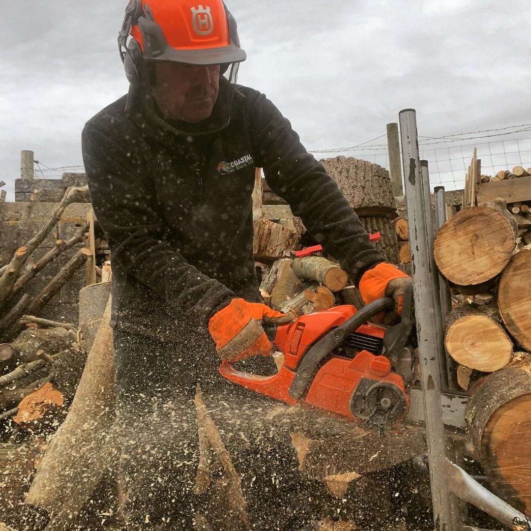order your logs now, firewood, logs, seasoned logs, seasoned firewood, Weymouth firewood, Portland Firewood, firewood Weymouth, firewood Portland, firewood Dorchester, husqvarna, oregon