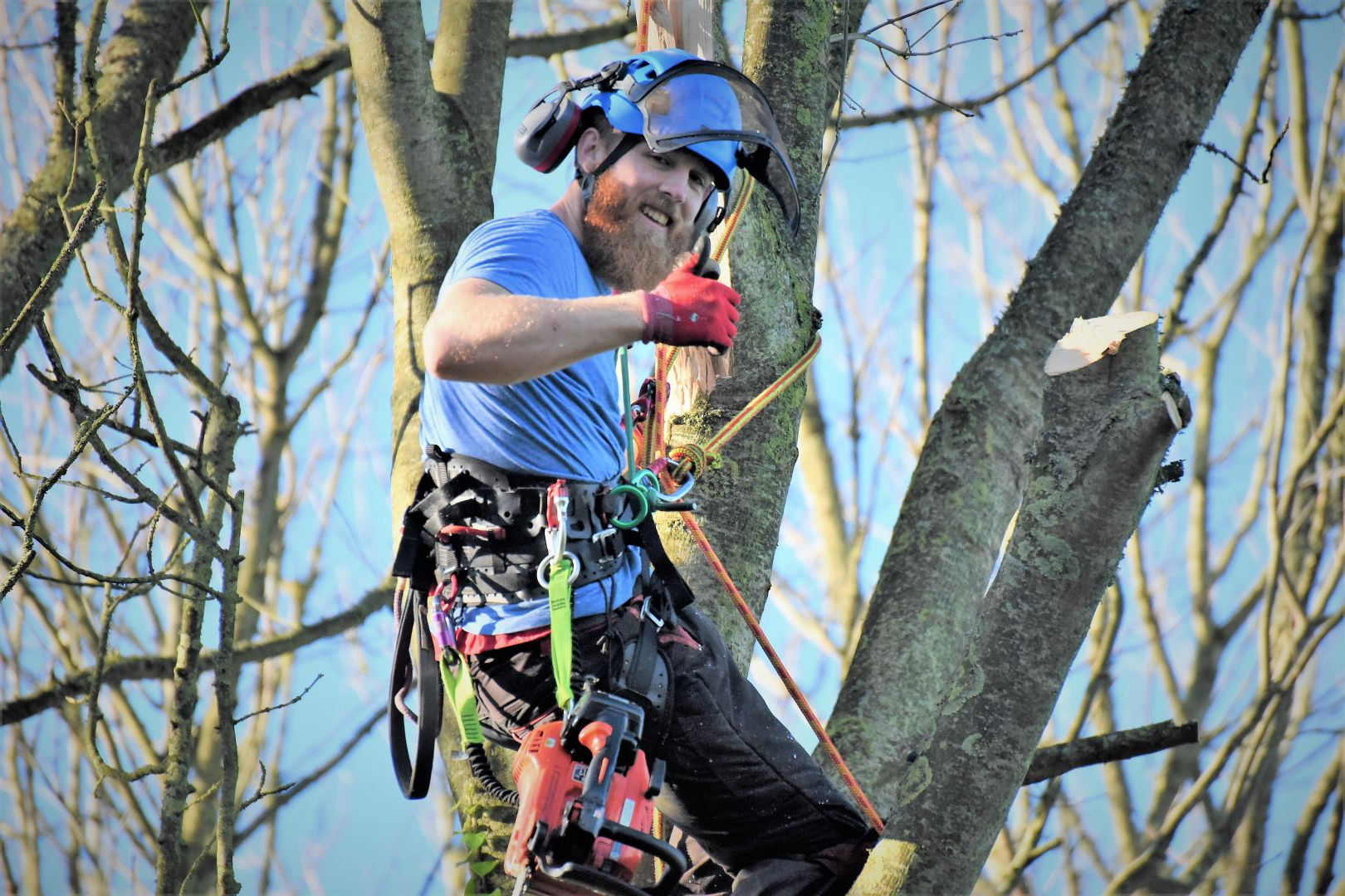 Weymouth tree surgery, emergency tree work, Weymouth tree surgeons, tree surgeons Weymouth, storm damage, clearing storm damage, arborist, climbing arborist, emergency tree work, tree safety work, wood chipper, recycling, waste recycling