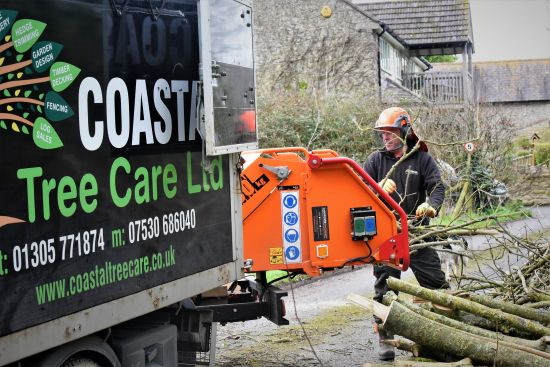 waste management, Weymouth tree surgeon, faq, faqs, FAQs, Weymouth tree surgery, Weymouth tree surgeons, tree surgeons Weymouth, storm damage, clearing storm damage, arborist, climbing arborist, emergency tree work, tree safety work, wood chipper, recycling, waste recycling
