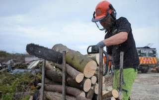 welcome to the wood yard, seasoned logs, logs, firewood, firewood logs, seasoned firewood logs, seasoned firewood, seasoned hardwood, seasoned mixed logs, seasoned softwood logs, log yard, log pile, log store, loading firewood, loading logs